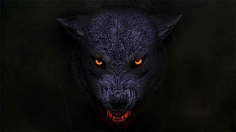 Orange Goblin - The Wolf Bites Back Album Cover