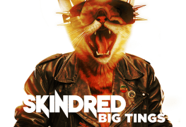 "Skindred - REVIEW: SKINDRED - ""Big Tings"""