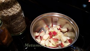 cooking apple chunks