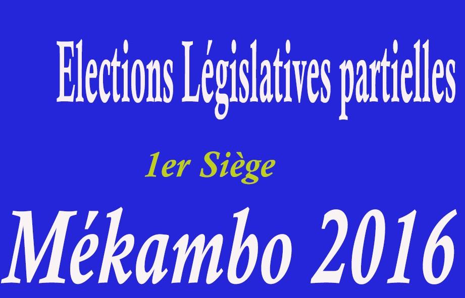 Election législative partielle dans la Zadié : forces et faiblesses de nos candidats