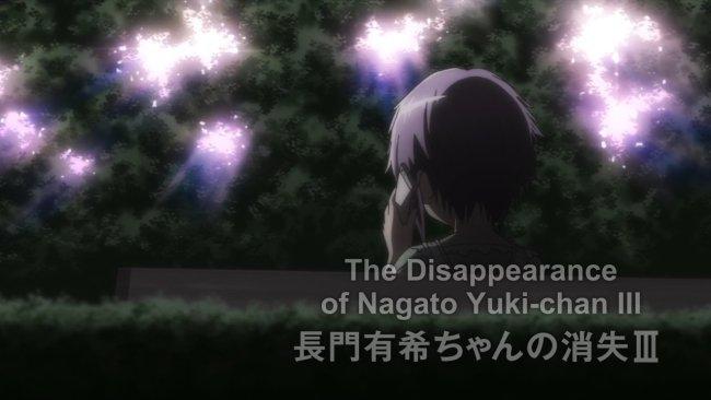 Yuki-chan 12-10