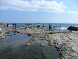 Enoshima 5