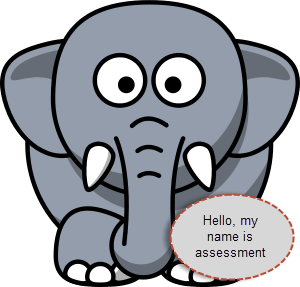 assessment-elephant-in-the-room