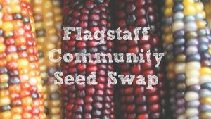 Flagstaff Community Seed Swap @ Coconino County Cooperative Extension