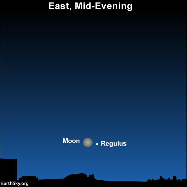 2019-january-22-moon-and-regulus