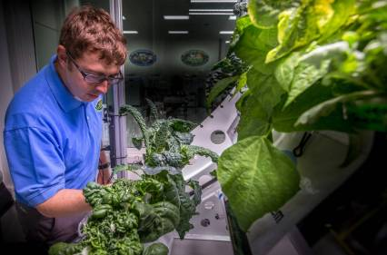 Matt Romeyn in Veggie Lab