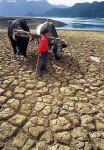 Golpea fuerte como un huracán pero sin tanto impacto mediático: Las sequías