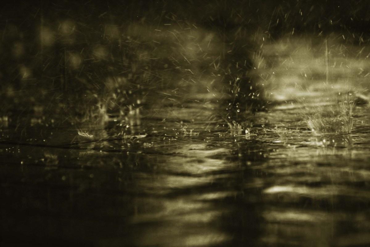 ¿A qué se debe el agradable olor cuando llueve? ¿Sabías que se llama Olor a Petrichor?