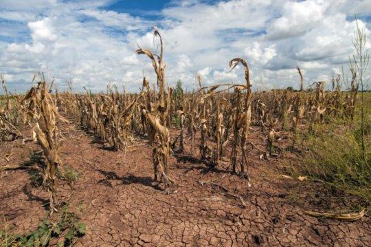 Según un estudio dirigido por Rutgers, las ondas estacionarias subtropicales pudieran generar un clima más húmedo y seco extremo en nuestro planeta