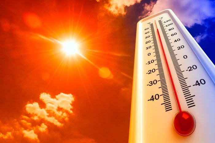 Pronósticos nada alentadores: la década 2014 a 2023 sería la más cálida de todos los años desde que comenzaron los registros