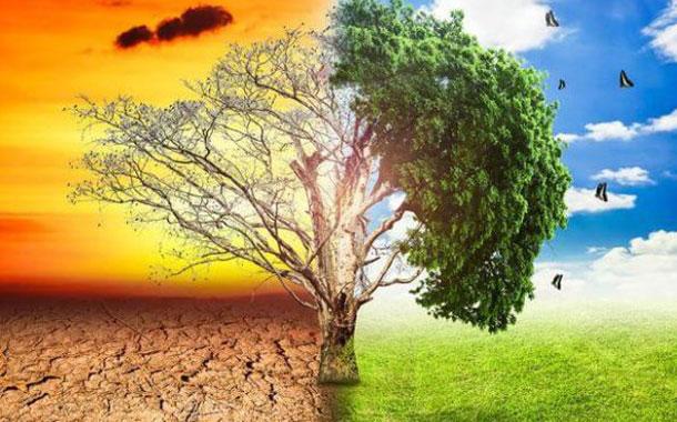 Nuevo informe: según el profesor noruego Ole Humlum, el calentamiento global y el «clima extremo» no se están acelerando