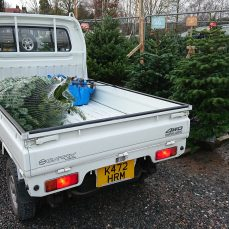 Suzuki Carry DD51T carrying a Christmas tree