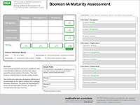 Boolean IA Maturity Assessment