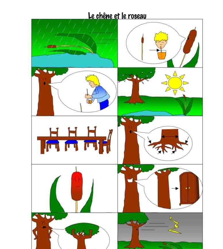histoire Le chêne et le roseau