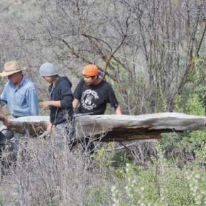 Students helped in the selection of materials for building the pit house. Photo by Ray Leaver