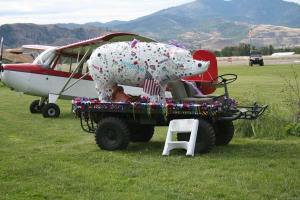 Visitors strolled among a shiny line of collectible cars and aeroplanes —and a pig. Photo by Darla Hussey