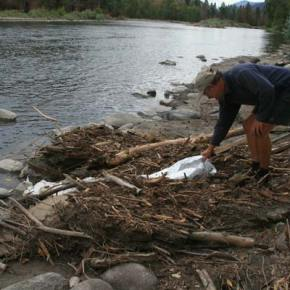 River guide and aficionado Steve Taylor helped spur a volunteer clean-up after he discovered tires, paint cans and the remnants of a yurt that had been washed into the Methow River by the recent mudslides. Photo by Marcy Stamper