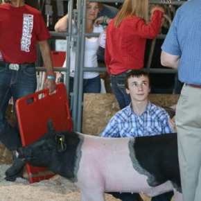 Methow Valley 4-H Swine Club preps for Okanogan County Fair