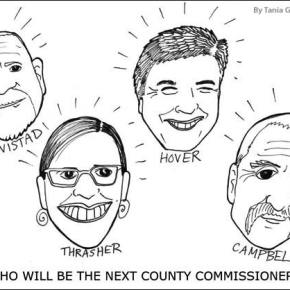 District 2 candidates