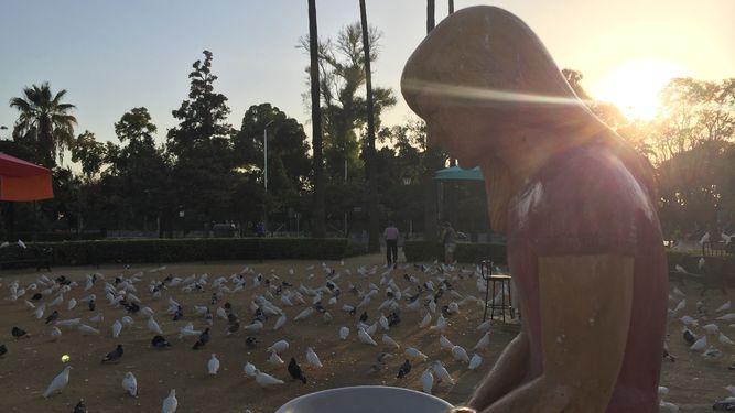 El renacer de las Fuentes de las Palomas