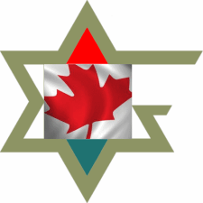 The Metivta of Ottawa Olive Magen David - No Text - 500x500x300