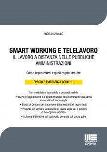 SMART WORKING E TELELAVORO