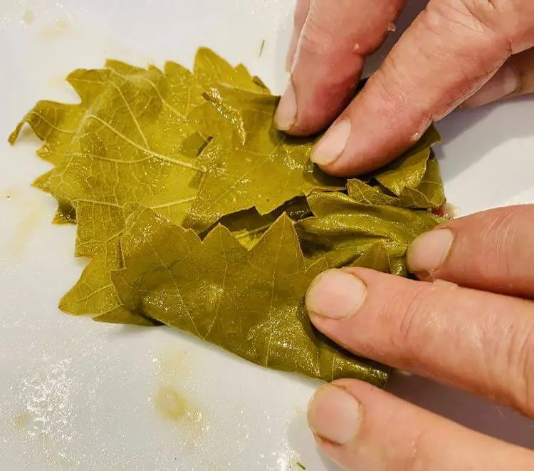 how to roll dolmades with pictures STEP 4