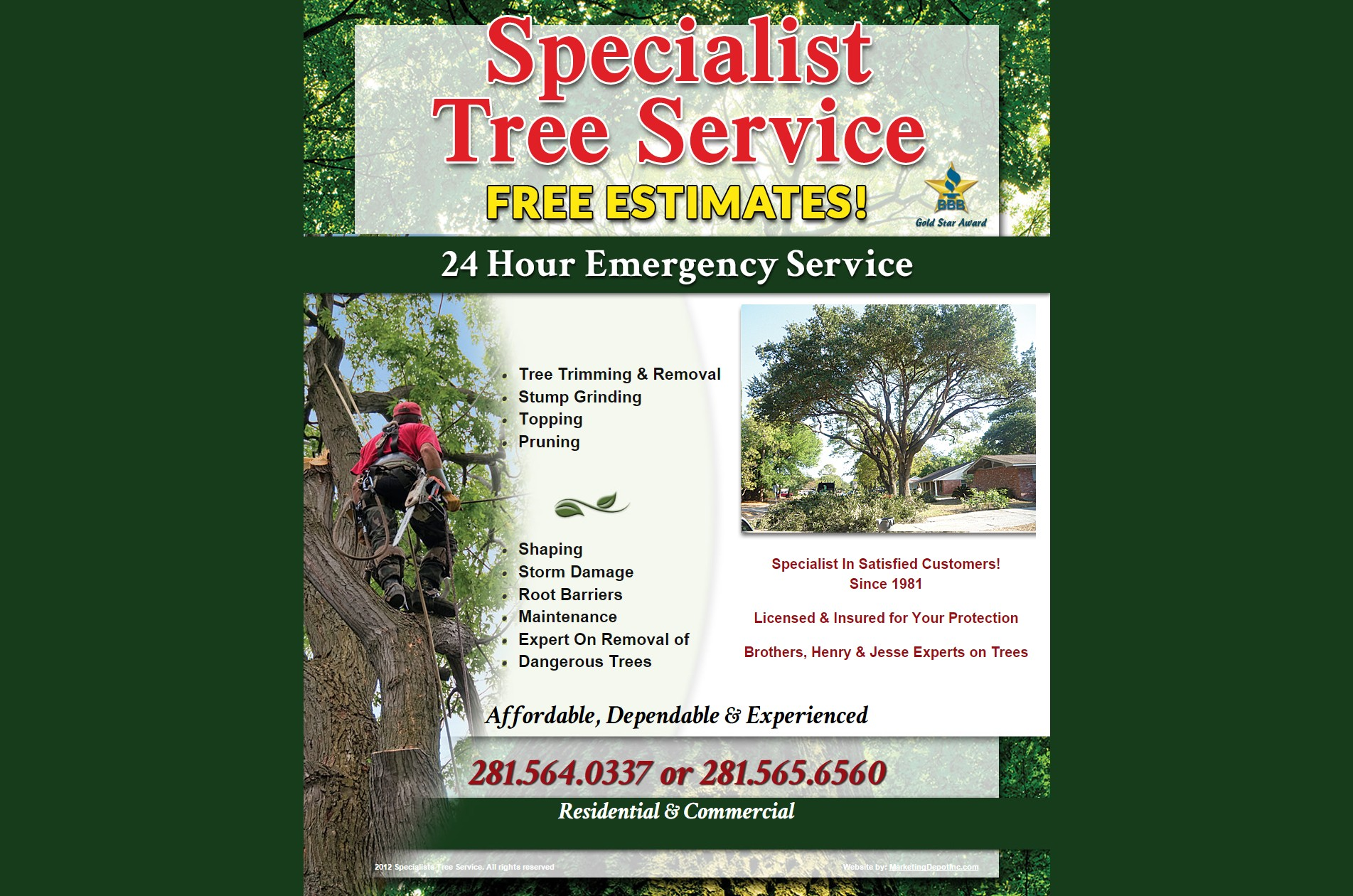 Specialist Tree Service