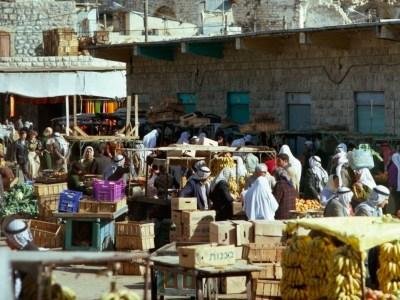حياةٌ في شارع الشهداء..