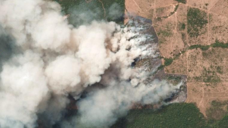La reacción en Twitter ante la catástrofe del Amazonas