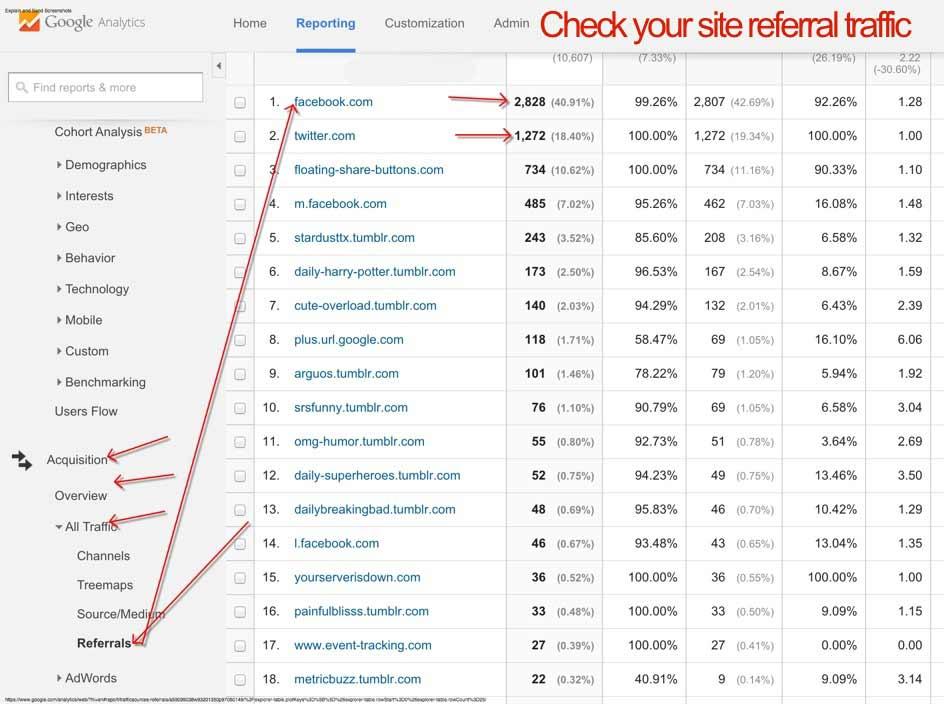check Google Analytics referral traffic 2