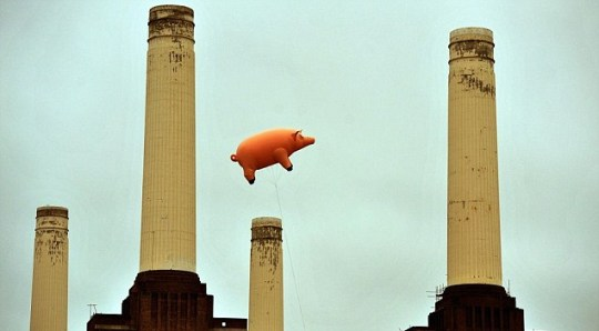 Flying pig used to recreate Pink Floyd Animals cover