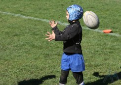 Ecole de Rugby Jarrie Champ (29)
