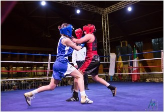 Gala boxe international_amateurs_1-2086