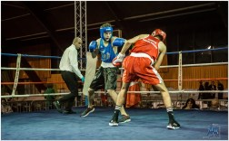 Gala boxe international_amateurs_3-2309