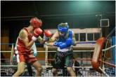 Gala boxe international_amateurs_3-2316