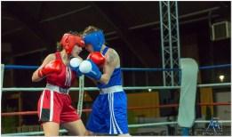 Gala boxe international_amateurs_4-2505