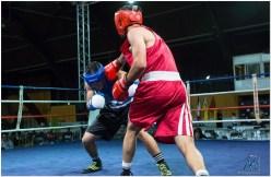Gala boxe international_amateurs_7-2897