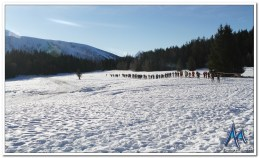AlphaRun Winter-15km2019_4218