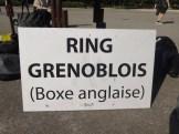 Ring Grenoblois Séance plein air (3)