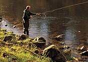 Teach him how to fish…