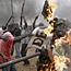 Kenya talks stall as opposition leaves country