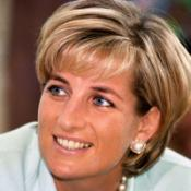 Cost of Diana probes passes £12.5m