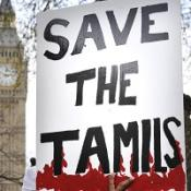 10 pro-Tamil protesters arrested