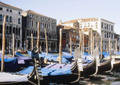 Port works 'will sink Venice'