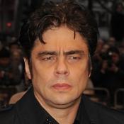 Benicio against monkey facility