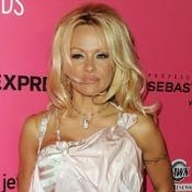 Pamela Anderson to star in panto