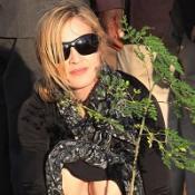 Madonna plants seeds of new school