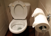 A toilet: someone is watching over you