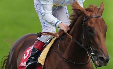 Gambler threatened to kill top racehorse Conduit